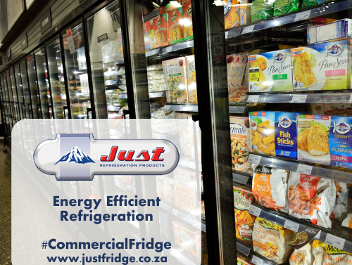 fridges that are energy efficient